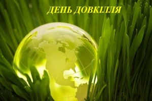 dendovk_1458139109_595x396_3_0